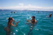 padang bali bali snorkeling adventurous