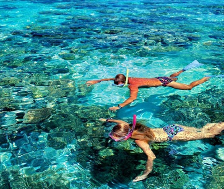 join our team with bali best snorkeling at padang bai