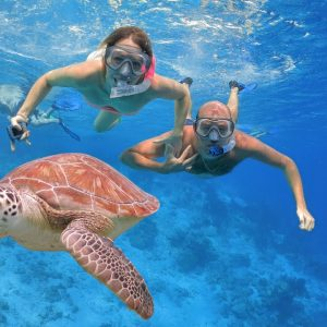 see turtles when snorkeling in Bali
