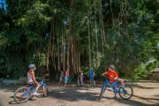 bali eco cycling tours in ubud. The kids will love it