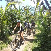 cycling tour in ubud the best way to see Bali