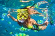 beautiful fish in lembongan bali snorkeling