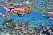 come snorkeling in bali at lembongan