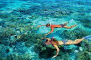 the best snorkeling in bali in nusa penida