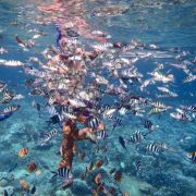 join us on the nusa dua snorkeling tour