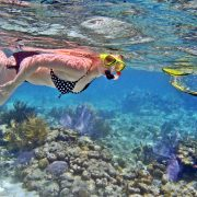 snorkeling fun in nusa dua