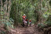 tabanan jungle motocross the best way to see bali