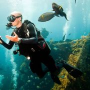you will love Scuba Diving Bali - Scuba Diving Certification