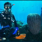 join us on the Scuba Diving Bali - Scuba Diving Certification