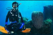 make the most of your bali holiday with Scuba Diving Bali - Scuba Diving advanced Certification
