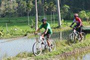 bali cycling tour discover ubud