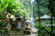 explore bali with the git git waterfall tour