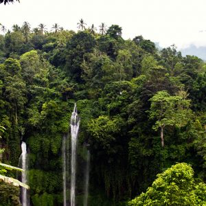 breath taking views at sekumpul Waterfall Bali
