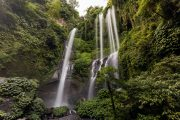 come and experience the breathe taking views at sekumpul Waterfalls