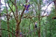 Bali Tree Tops Swinging in the trees